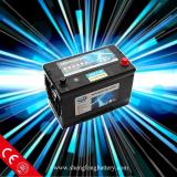 Auto battery(12v)