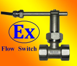 GE-316 Paddle Flow Switch ( Similar as Caleffi & Explosion-Proof )