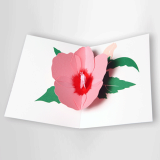 Rose of Sharon POP-UP CARD