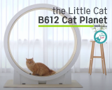 Cat Running Machine _ The Little Cat _ White Gold Plated