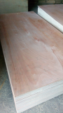 Sell_ Okoume plywood grade AB glue MR for construction