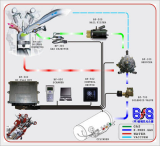 LPG Sequential Injection System
