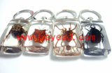 real insect acrylic lucite keychains,keyring,unique gift,business gift,customized gift