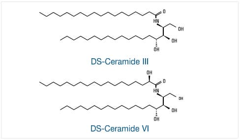 Ceramide III For Cosmetic Materials on water for cars
