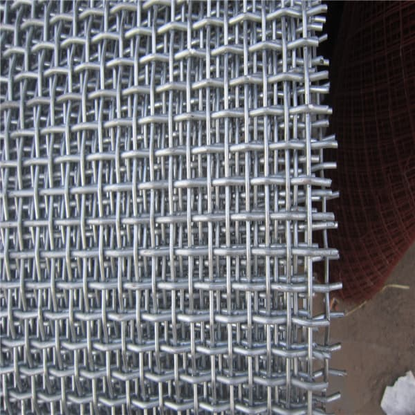 Crimped wire mesh from hebei wanlai import export co