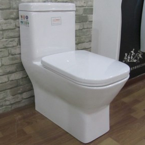 China Sanitary Ware Suppliers Washdown One Piece Toilet