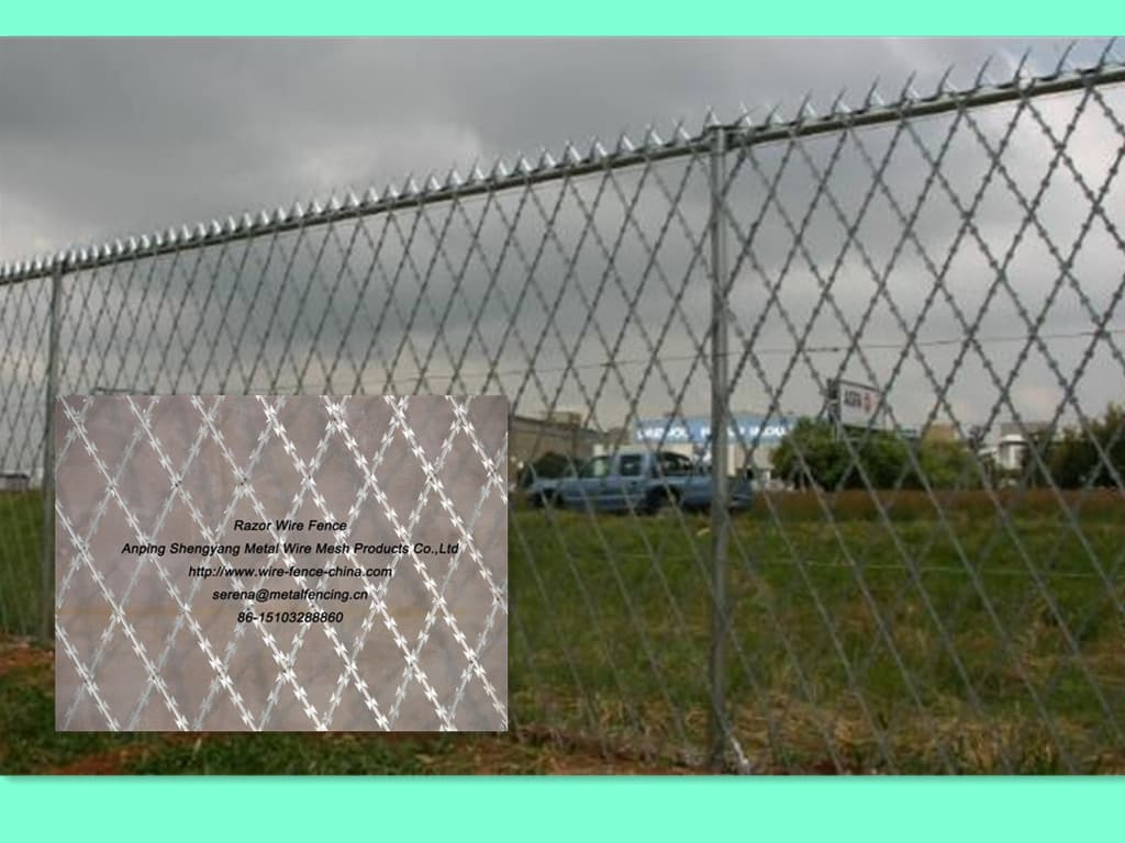 Razor wire fence from Anping Shengyang Metal Wire Mesh Products Co ...