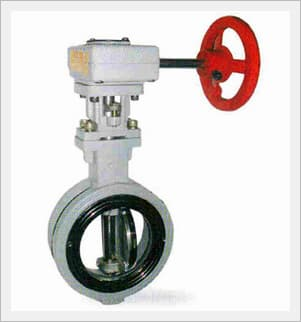 High Performance Butterfly Valve, Worm Gear (Stainless)