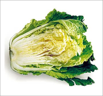 <strong>Chinese</strong> <strong>Cabbage</strong>