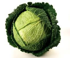 <strong>chinese</strong> fresh green round <strong>cabbage</strong>