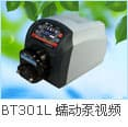 BT101L+YZ15 peristaltic pump intelligent flow type-0.00016-575ml/min