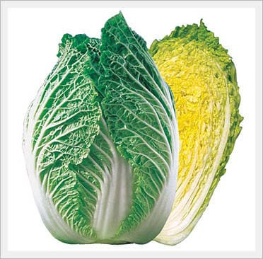 <strong>Chinese</strong> <strong>Cabbage</strong> Seeds
