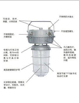 sf-06-1.jpg
