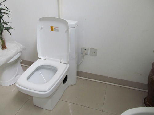 Electric Toilet Gallery