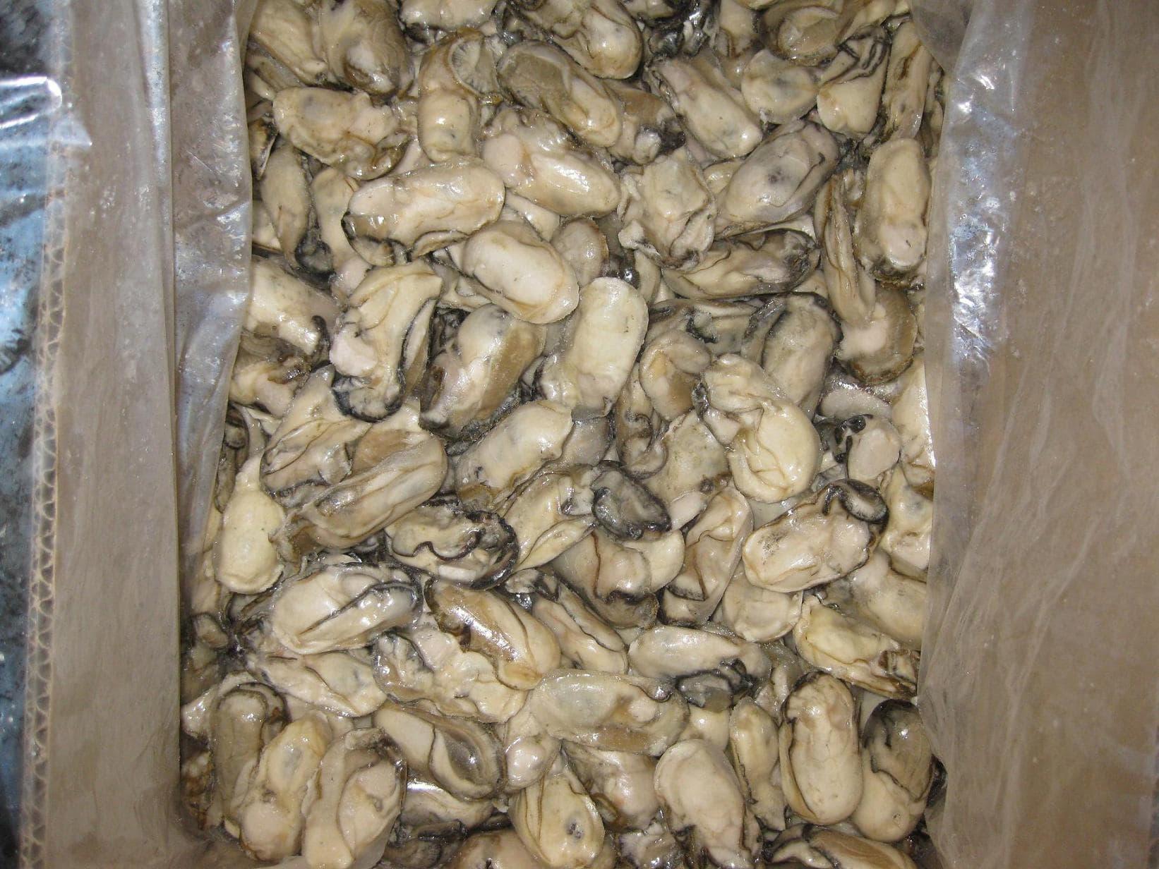 Frozen Oyster Meat I Q F Tradekorea