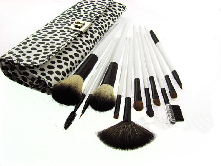 pro makeup brush set. 12 Piece Makeup Brush Set