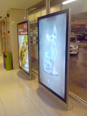 Product Thumnail Image Product Thumnail Image Zoom & Super Slim LED Lightbox from Yeroo Group CO.LTD B2B marketplace ... Aboutintivar.Com